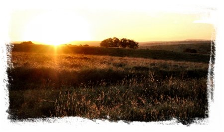 Dusk & Dark & Dawn - a golden sunrise on Dartmoor©vcsinden2013