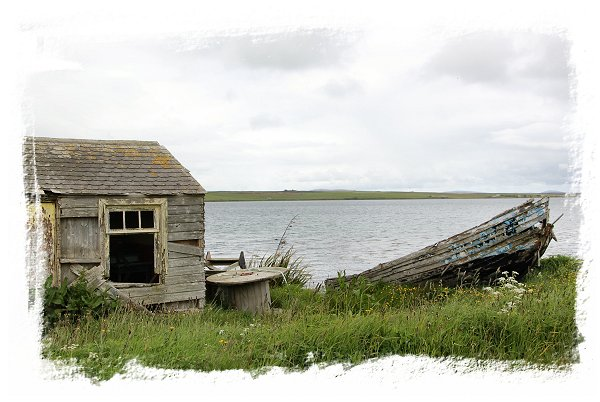 Hoy, Orkney Islands - decay and beauty ©vcsinden2015