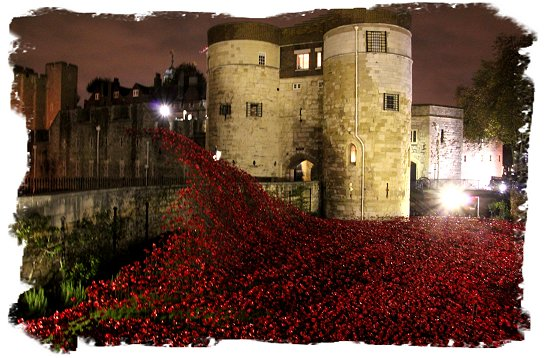 Poppies for November, floodlit at the Tower of London ©vcsinden2014