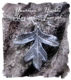 Hawthorn - hand-crafted silver pendant  from the Wild Roses collection