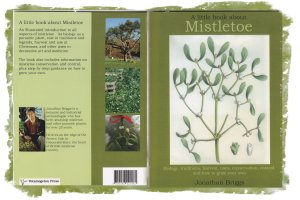 A Litle Book about Mistletoe - Jonathan Briggs