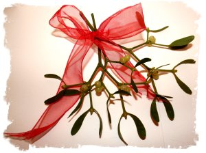 Mistketoe sprig with a red bow, ready for hanging