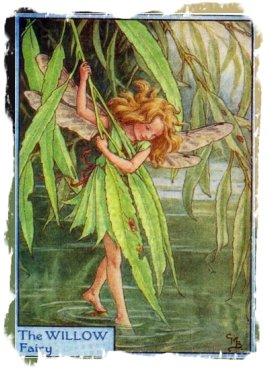 Willow Fairy - Cecily Mary Baker