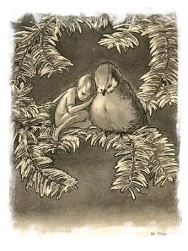 Illustrator M Goetz witha wonderful fairy and bird snuggled in a yew branch