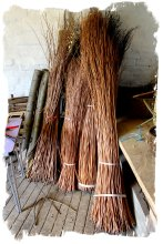 Willow withies ready for sculpture