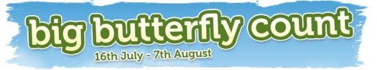 Big butterfly Count - UK 2011 banner