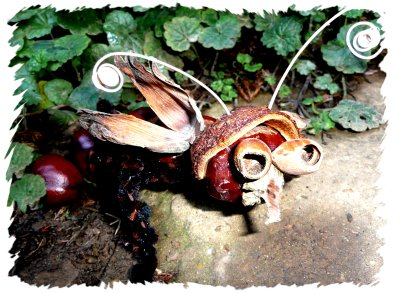 Finished conker beast peering out from under the leaves