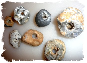 Seven hag stones - found on Hythe, Kent, UK beach