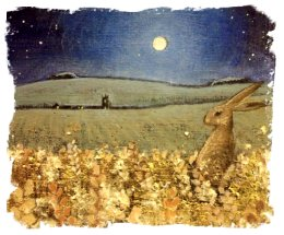 Hannah Willow - Moon Watching