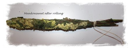Smudging-meadowsweet stick after rolling ©vcsinden2012