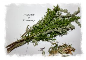 Smudging herbs - mugwort & rosemary make a fine combination ©vcsinden2012