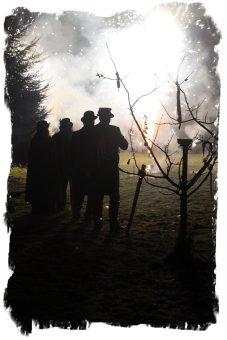 Wassail at Rye Foreign - decorated apple tree