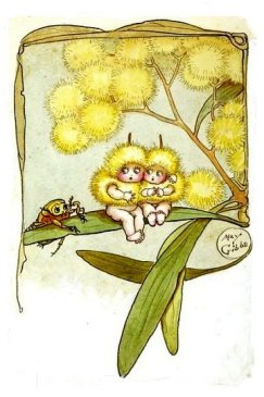 Wattle or Minosa Babies by Mae Gibbs c1929