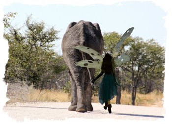 Muddypond Green, led by bull elephant at Etosha ©vcsinden2014