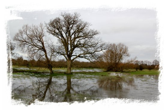 Flooded meadows near Headcorn, Kent ©vcsinden2014