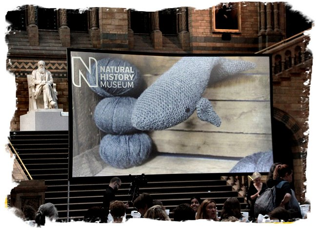 Crochet a blue whale Workshop at the Natural History Museum, London ©vcsinden2017