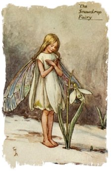 'The Snowdrop Fairy' Cecily Mary Barker